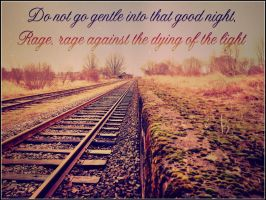 Do Not Go Gentle Into The Night ~ Quote by RMS-OLYMPIC