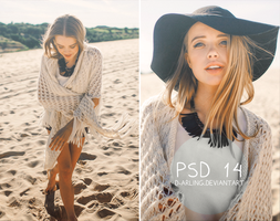 PSD 14 by d-arling