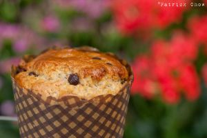Chocolate chip muffin 2 by patchow