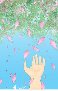 Raining Sakura Colour by sketched1
