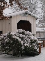 Covered Bridge in Winter by botanystock