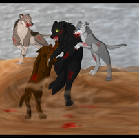 Fight by KendaWolf