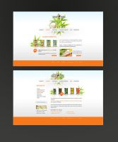 Health food products by Bredy75