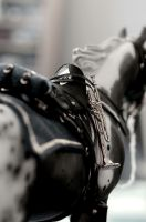 Cavalry Horse Closeup by NyxVivendi