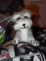 Needle Felted Schnauzer Pup by Madisya