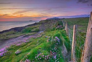 The Coast Path by cprmay