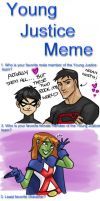 Young Justice Meme by WendyDoodles
