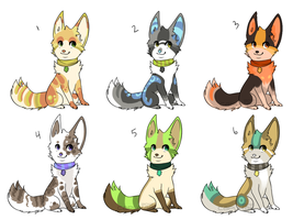 CapuMagic ADOPTS by Magicpawed