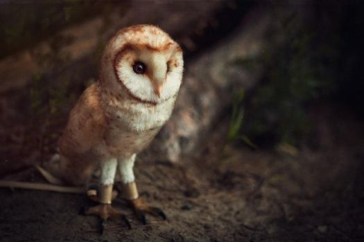 Barn owl Chloe by Irentoys