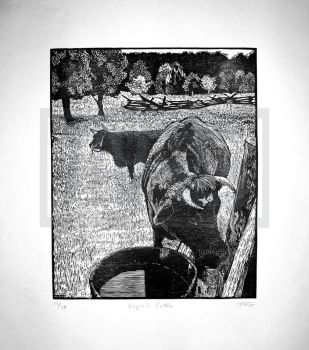 Virginia Cattle by MAGPrintmaker