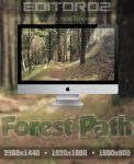 Forest Path Wallpaper by GavinAsh