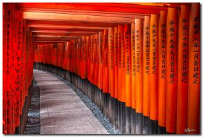 Fushimi Inari-taisha 4 by dragonslayero