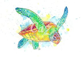 Green Turtle Watercolour Painting by CazziArt