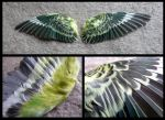Green Budgie Wings by CabinetCuriosities