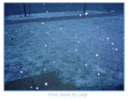 First Snow by cooper
