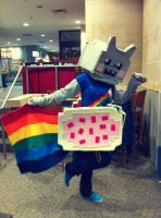 Nyan Cat Costume by dodgyrommer
