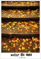 Steps of Fall by Clair3Su3