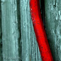 red and green 2 by EvaShoots