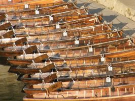 Rowing Boats 2 by alanhay