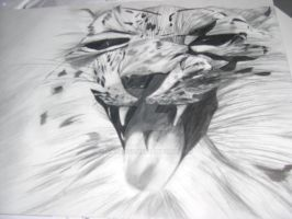 Leopard Pencil Drawing by anubis55