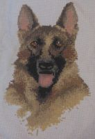 German Shepherd Cross Stitch by canadiankazz