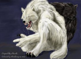White Wolf Black Love by rwolf