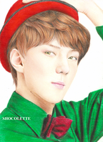 Miraculous Sehun by shocolette