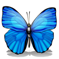 Butterfly 2 by cocuklari2