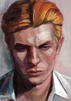 The Man Who Fell To Earth by charlesdances