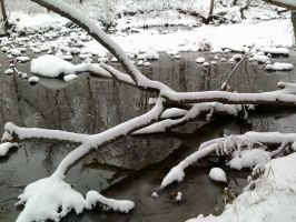 calm icey brook3 by chickiedee