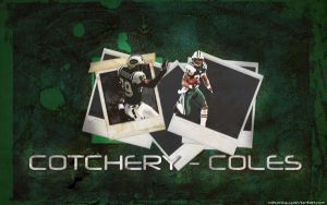 Cotchery-Coles Widescreen by cotrackguy