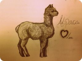 I love Alpacas like loadssss by underthcharcoalskin