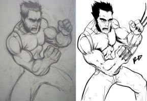 Wolverine pencil to ink by Vvendetta77