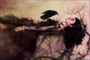 The Sleeping Maiden and the Raven by Madalinka