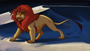 A lion in the desert by lilowlaroo