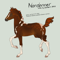 Nordanner Foal 1959 FOR SALE by Schn3e