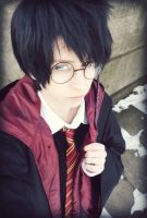 Harry Potter by CruxisCosplay