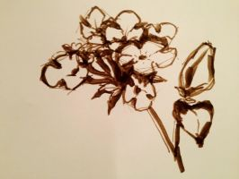 Felt-tip pen Unknown flowers by VLStone