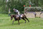 3DE Cross Country Brush Fence Series by LuDa-Stock