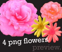 4 Large png flowers by Letterbomb21