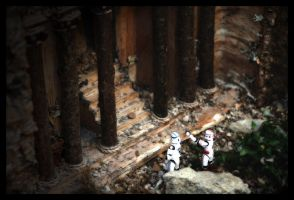Clone Troopers on Vacation by darthpayback