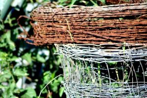 Barbed Wire by TheDayILiveFor