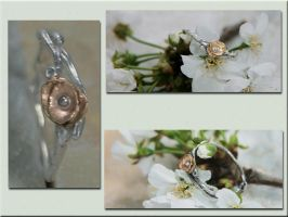 Blossom Ring 1 by Kayfin