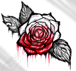 -Rose- by MATicDesignS
