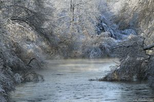 Cold morning on the river by natureguy