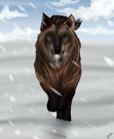 Ares Running in the Snow by BettaFreak123