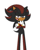 Shadow the Hedgehog by ShadowRules4ever