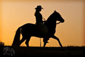 Cowgirl at Dusk by kvickrey