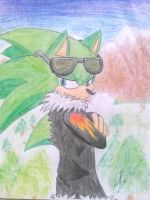 contest entry: scourge the hedgehog by horseylove91