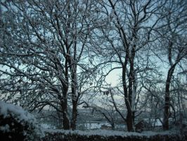 A Cold Blur by Lucinda-Emma